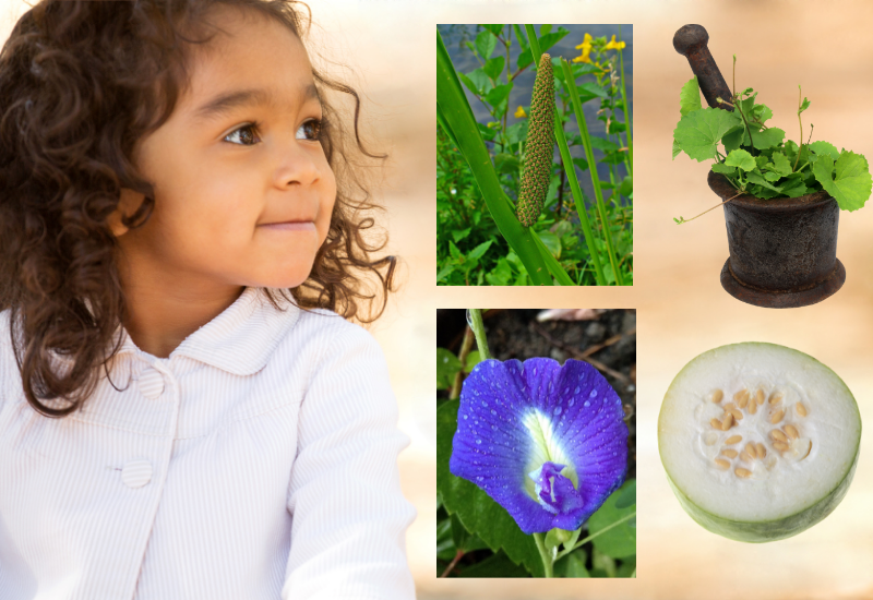 Ayurvedic Remedies for Your Child