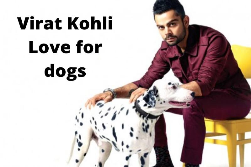 Virat Kohli love dogs
